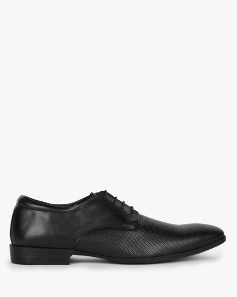 Textured Derby Shoes With Lace-Ups By ESCARO ( Black )